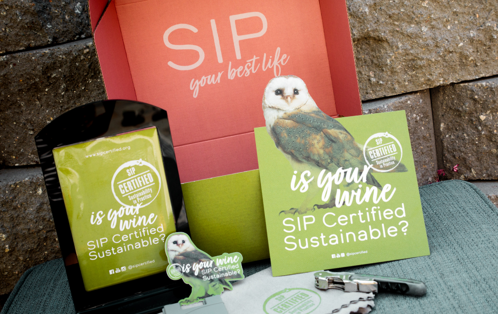 Box of SIP Certified swag - behold the adorable owl