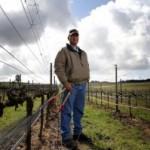 Meet the SIP Farmers: Jim Stollberg