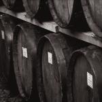Seeking Pilot Wineries for SIP Certified